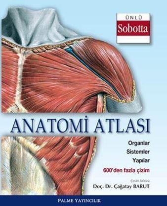 Resim Anatomi Atlası (Sobotta Çizimleri)