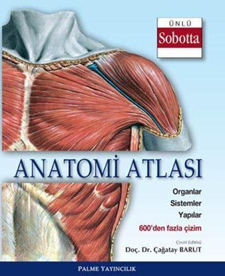 resm Anatomi Atlası (Sobotta Çizimleri)