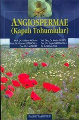 Resim Angiospermae (Kapalı Tohumlar)
