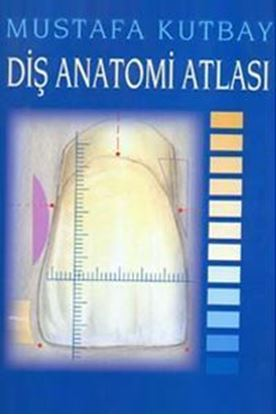 Resim Diş Anatomi Atlası