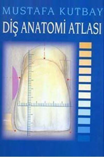 resm Diş Anatomi Atlası
