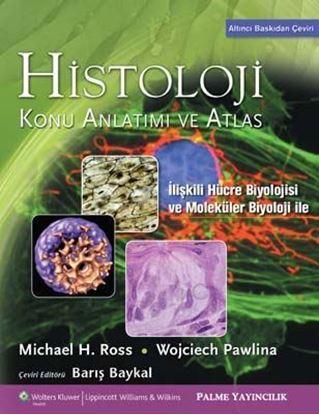 Resim Histoloji Konu Anlatımı ve Atlas