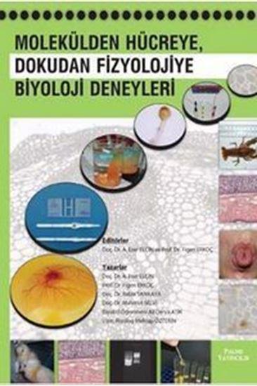 resm Molekülden Hücreye, Dokudan Fizyolojiye Biyoloji Deneyleri