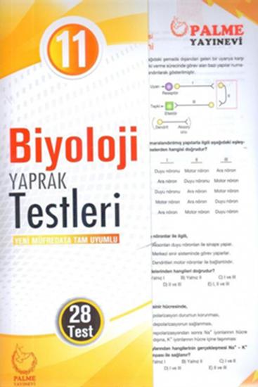resm 11.SINIF BİYOLOJİ YAPRAK TEST ( 28 TEST )