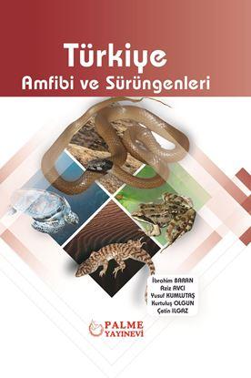 Resim Türkiye Amfibi ve Sürüngenleri